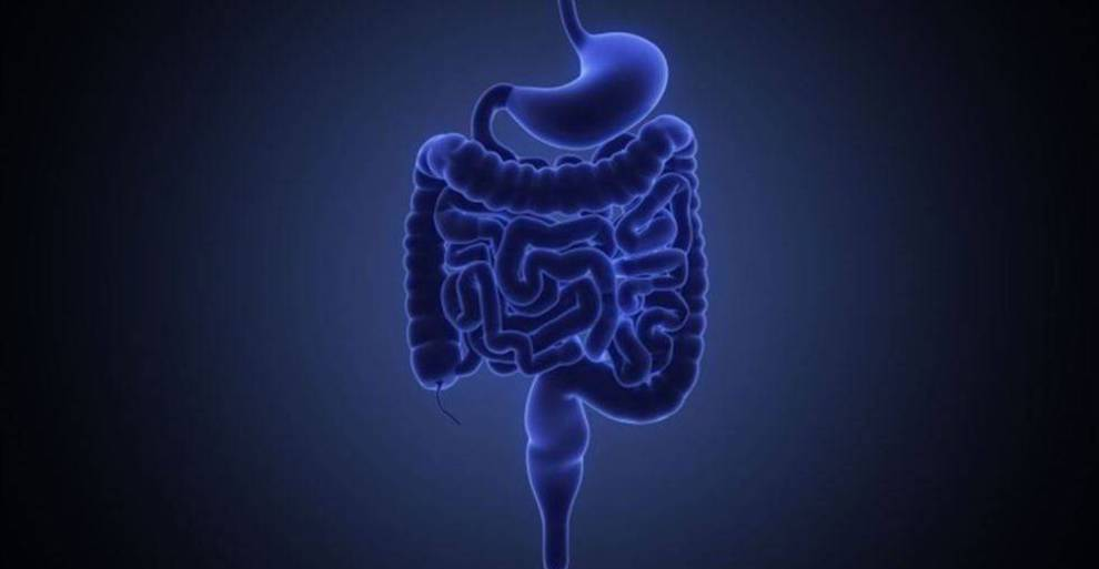 sindrome del intestino irritable